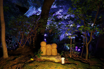 A image of Hase no Akari summer illumination event