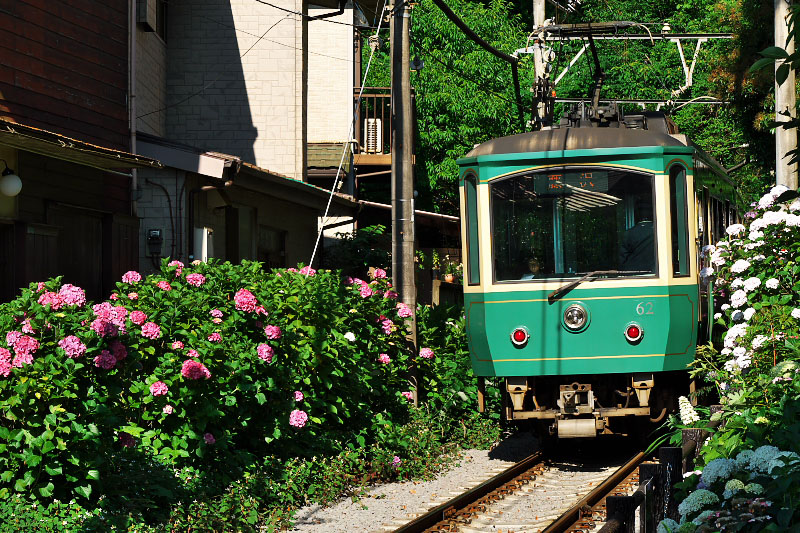 Goryo Jinja Shrine and Enoden train.