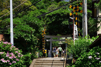 Railroad crossing is a entrance of Goryo Jinja shrine.