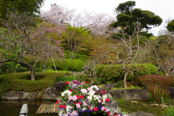 Overview of the garden of Hasedera Temple.