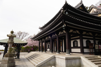 Kannon-do Hall is a main temple building of Hasedera Temple.