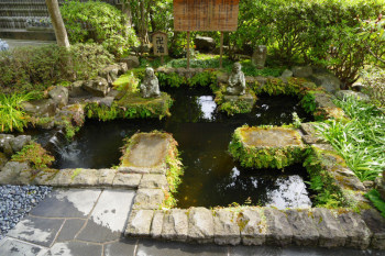Manji-shaped pond in the garden of Hasedera Temple.