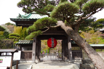 Front gate of Hasedera Temple.