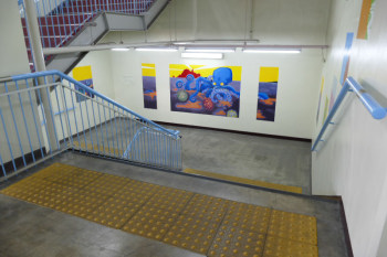 Inside of Shonan-Enoshima Station.