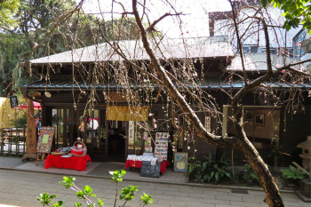A Japanese style cafe and plum flowers.