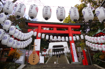 The red torii gate is decorated with lanterns on new year.