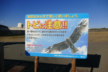 A warning signboard for Black kite.
