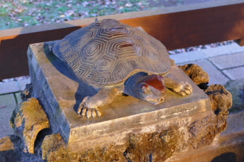 Tortoise-shaped water tap