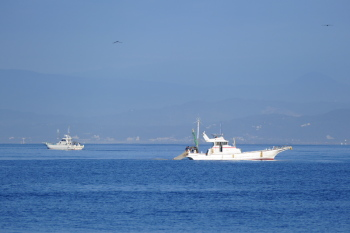 Fishing boats can be seen from Katase Nishihama.