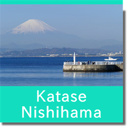 Link to Katase Nishihama Beach guide